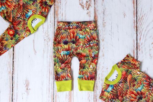 Zestaw Dżungla body krótki + długi rękaw + spodnie